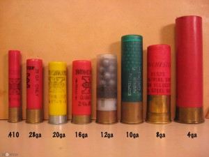 Various gauges of shotgun shells.